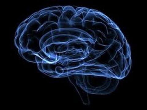 racetams for mental clarity